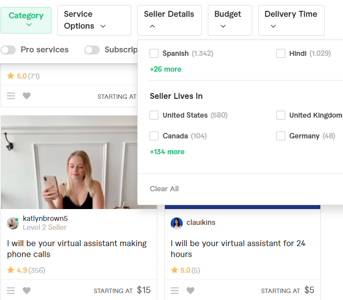 search virtual assistant